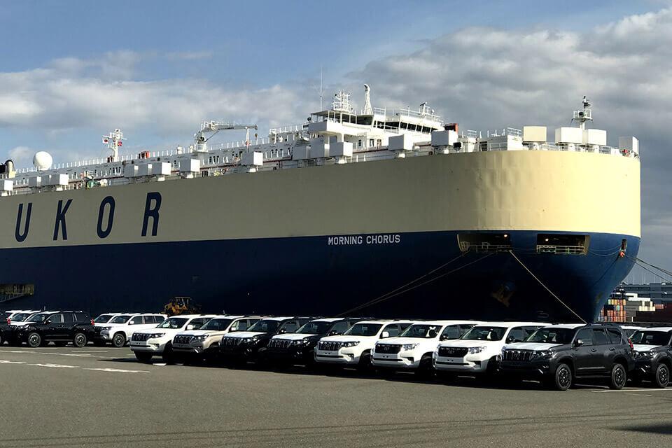 正規輸出入等に使用される車両運搬船